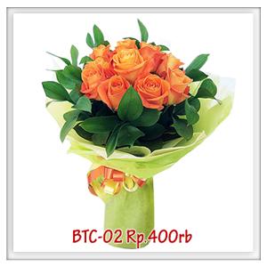 btc-02-400rb