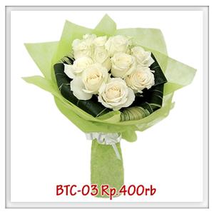 btc-03-400rb