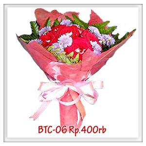btc-06-400rb