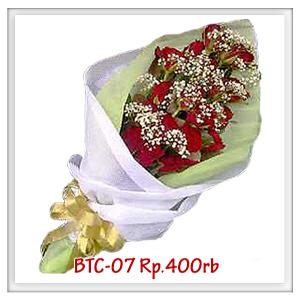 btc-07-400rb
