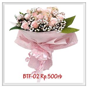 btf-02-500rb