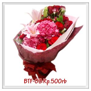 btf-03-500rb