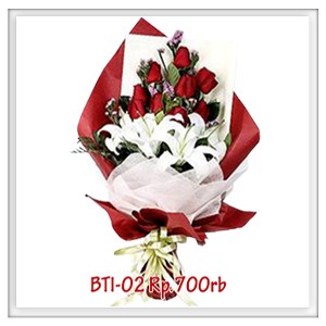 bti-02-700rb