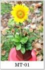 Toko Bunga Paling baik di Daerah Jakarta Selatan