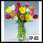 Bunga Tulip, Bunga Melati serta Bunga lily